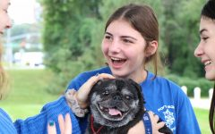 Peaceful puppies: Therapy dogs aim to comfort students