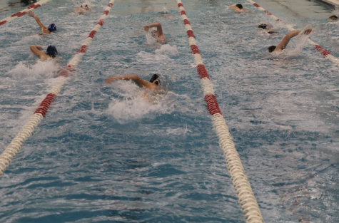 Swim coach replaced after being banned from JCC