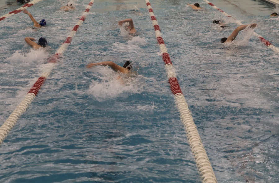 Swimmers practicing at the JCC. The swim team got a new coach this week after their previous coach was prohibited from working at the JCC.