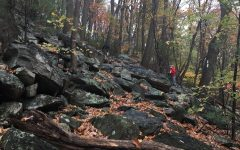 Outdoor Club members hike along the Appalachian Trail,