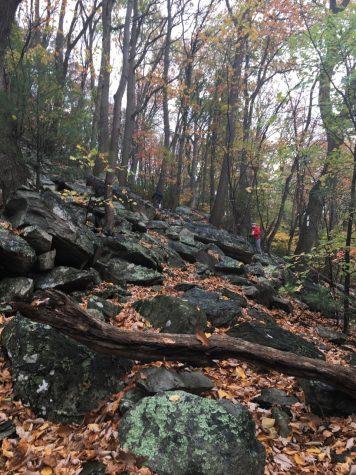 Outdoor Club members hike along the Appalachian Trail,